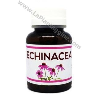 Echinacea 60cps
