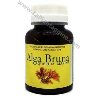 Corpo - Alga Bruna