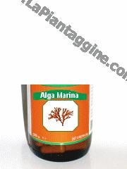 Integratori alimentari - Alga Marina