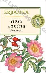 Vitamina C - Rosa canina 50cps