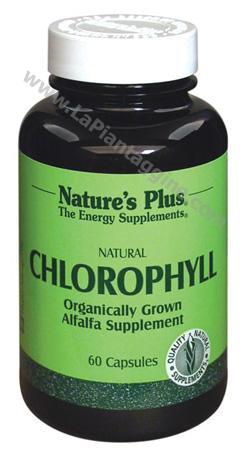 Alimenti - CHLOROPHYLL Clorofilla