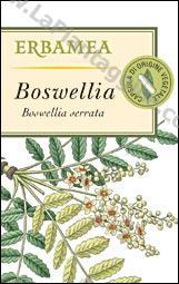 Artrite artrosi e reumatismi - Boswellia