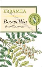Artrite artrosi e reumatismi Boswellia