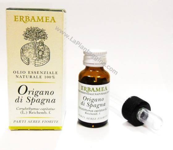Olio essenziale di Origano di Spagna