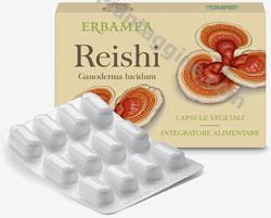 Reishi ( ganoderma lucidum)