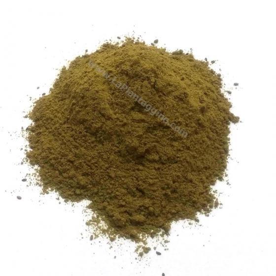 Intestino pigro - Polvere d' oriente ( Transito intestinale)