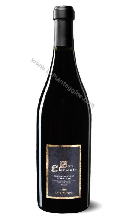 Vini Spumanti e Amari - SAN CLEMENTE Montepulciano d'Abruzzo DOC Vino ZACCAGNINI