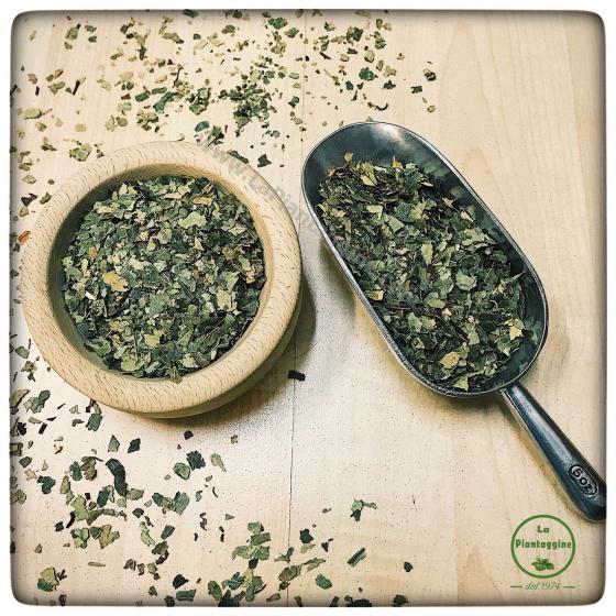 Drenanti - Betulla foglie 100g