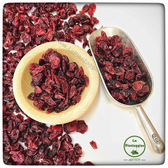 Cranberry (mirtillo rosso) 100g