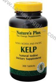 Alimenti - Alghe marine Kelp
